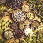 Herbolarios y Alimentación Fitness